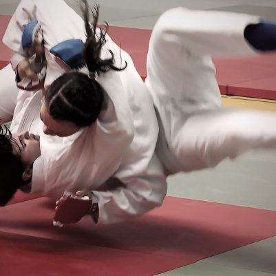 jujitsu fighting systeme definition